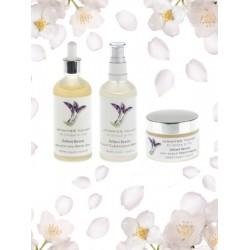 Defiant Beauty Dry Scalp treatment
